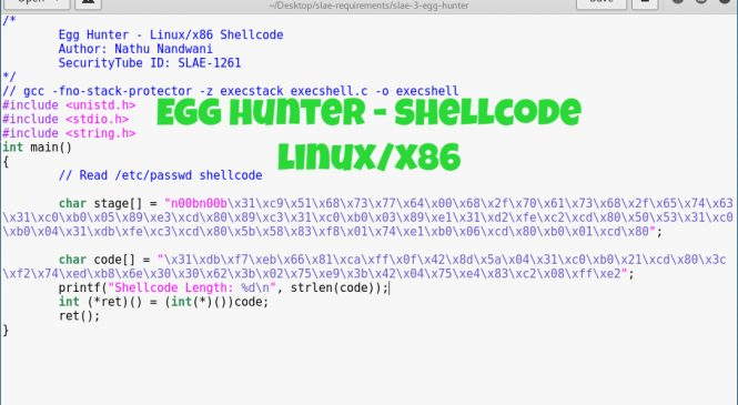 Egg Hunter – Shellcode (Linux/x86)